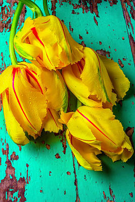 French Tulips On Green Table Art Print