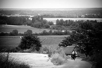 Photograph - French Vineyards by Jason Smith