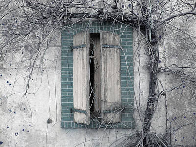 Grape Vines Mixed Media - French Window 001 by Marcus Kett