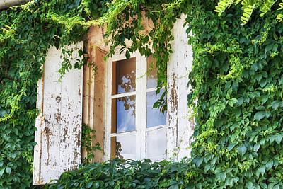 Photograph - French Window In Provence by Tatiana Travelways