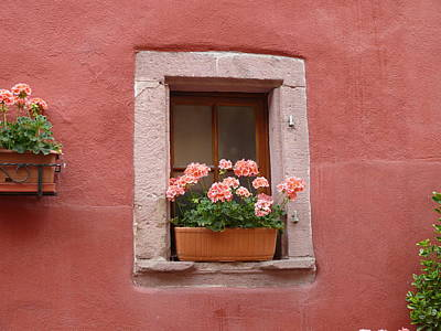 Photograph - French Window by John Bushnell