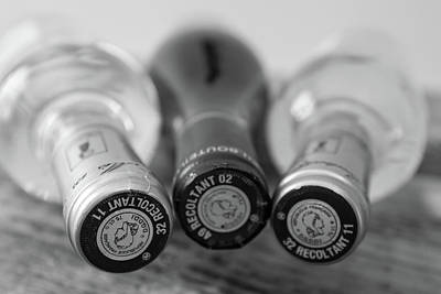 Vintage Wine Lovers Photograph - French Wine Bottles by Georgia Fowler