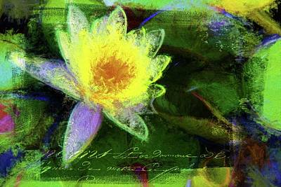 Photograph - French Yellow by Alice Gipson