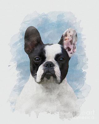 Watercolor Pet Portraits Digital Art - Frenchie by Art of Pics Studio