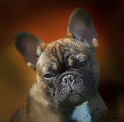 Digital Art - Frenchie Being Pensive by Gloria Anderson