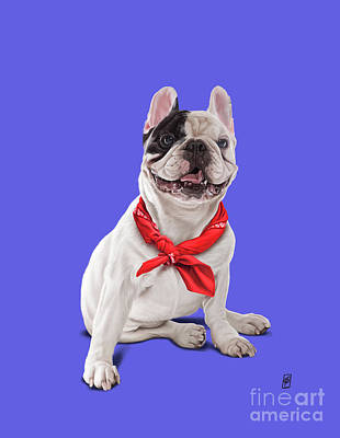 Digital Art - Frenchie Colour by Rob Snow