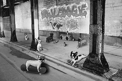 Puppies Digital Art - Frenchie Street Gang - Black And White by Douglas Mahoney