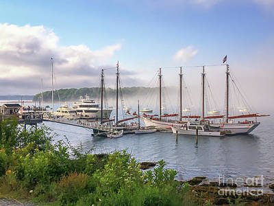 Photograph - Frenchman's Bay Bar Harbor by Elizabeth Dow