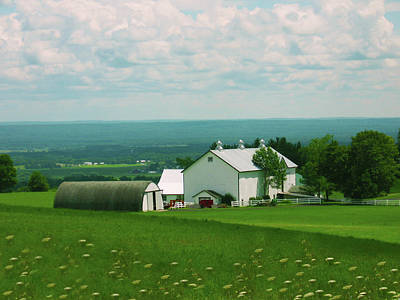 Landscape Photograph - Fresh Americana by Mary Burr