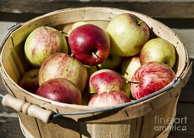 Photograph - Fresh Apples by Alana Ranney