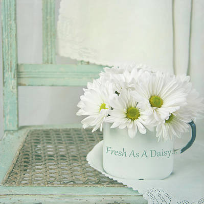 Photograph - Fresh As A Daisy by Cindi Ressler