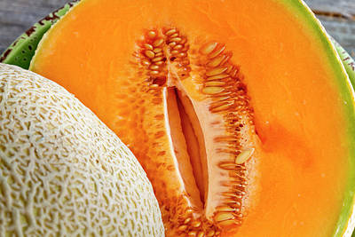 Fresh Cantaloupe Melon Art Print