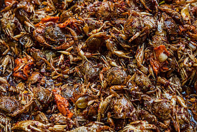 Photograph - Fresh Crab Korean Market by James BO Insogna