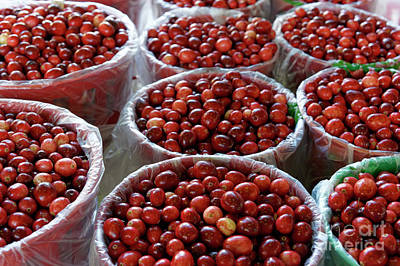 Photograph - Fresh Cranberries by John  Mitchell