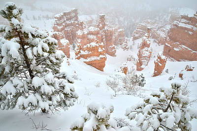 Photograph - Fresh Fallen Snow At Bryce Canyon by Ray Mathis