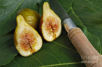 Figs Photograph - Fresh Figs 2 by Angelo DeVal