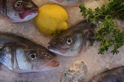 Photograph - Fresh Fish by Printed Pixels