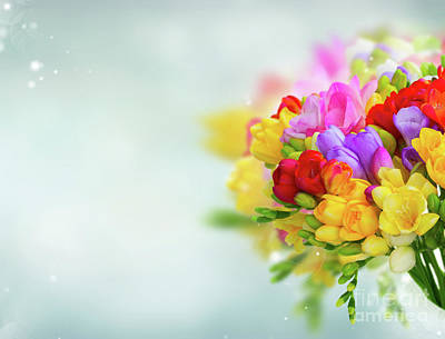 Photograph - Freesia Bouquet by Anastasy Yarmolovich