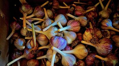 Photograph - Fresh Garlic by Bryan Smith