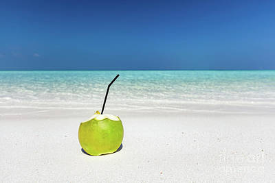Photograph - Fresh Green Coconut, Ready To Drink. Tropical Beach In Maldives by Michal Bednarek