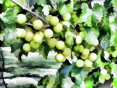 Fresh Green Grapes On Vine Art Print by Lanjee Chee