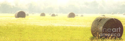 Photograph - Fresh Hay In The Morning by Tamyra Ayles