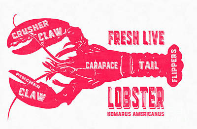 Fresh Live Lobster Vintage Sign Art Print by Edward Fielding