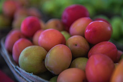 Photograph - Fresh Market Plums by Randy Walton