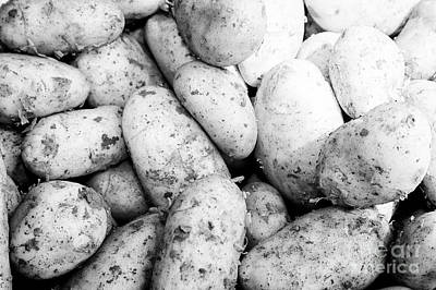 Spuds Photograph - Fresh New Irish Potatoes On Display On A Greengrocers Food Stall In The Uk by Joe Fox