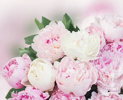 Photograph - Softnes Of Peonies by Anastasy Yarmolovich