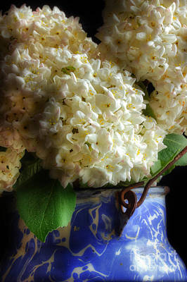 Viburnum Photograph - Fresh Picked For You by Michael Eingle