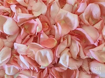 Fresh Rose Petals Art Print