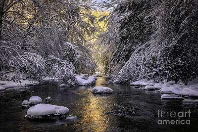 Photograph - Fresh Snow by Anthony Heflin
