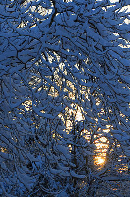 Ridgewood Photograph - Fresh Snow At Sunrise by Dimitri Meimaris