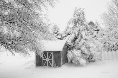 Fresh Snow Fall In March Bw Art Print by Thomas Woolworth