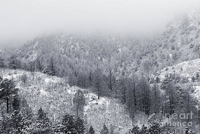 Photograph - Fresh Snow In Cheyenne Mountain Toned Color by Steve Krull