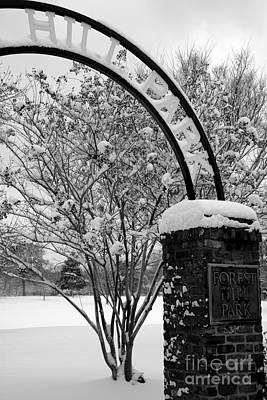Digital Art - Fresh Snow by Kelvin Booker