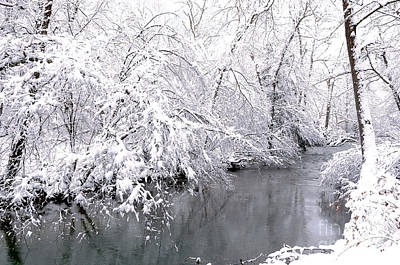 Fresh Snowfall Along The River Art Print by Thomas R Fletcher