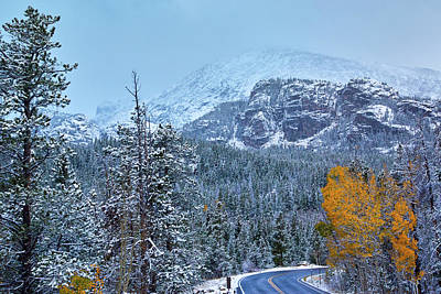 Photograph - Fresh Snowfall by John De Bord