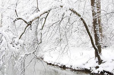 Fresh Snowfall On The River Art Print by Thomas R Fletcher