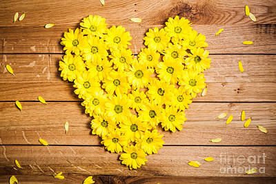 Blooming Photograph - Fresh Spring Flowers In Heart Shape Among Petals On Rustic Grunge Wood by Michal Bednarek