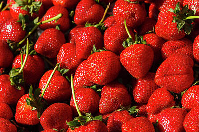 Photograph - Fresh Strawberries by Daniel Murphy