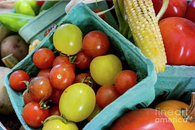 Photograph - Fresh Tomatoes by George Sheldon