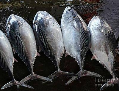 Photograph - Fresh Tuna For Sale At The Market by Yali Shi