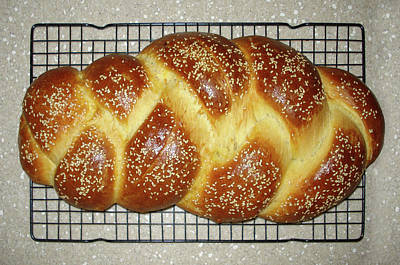 Photograph - Freshly Baked Challah Bread by Ben Kotyuk