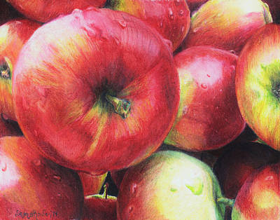 Drawing - Freshly Picked by Shana Rowe Jackson