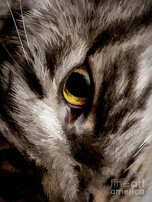 Digital Art - Friday Kitty by Mary Raderstorf