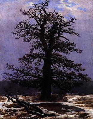 Caspar Digital Art - Friedrich Caspar David Oak In The Snow by Caspar David Friedrich