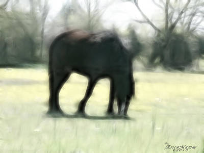 Art Print featuring the photograph Friend Of Distinction  by EricaMaxine  Price