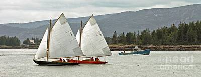 Photograph - Friendly Sail by Christopher Mace